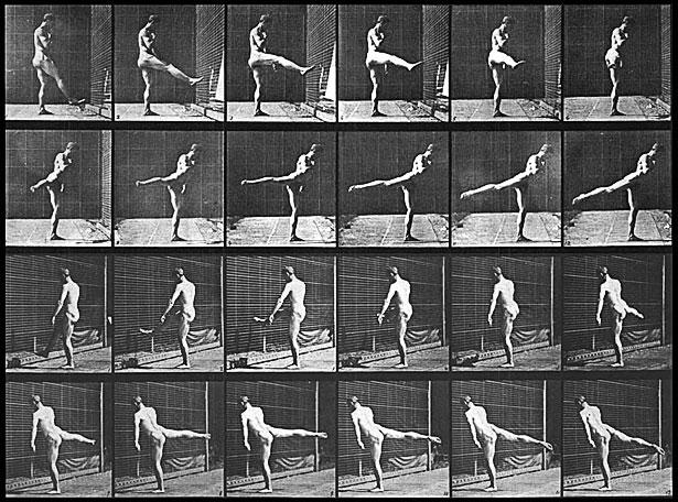 Eadweard Muybridge motion